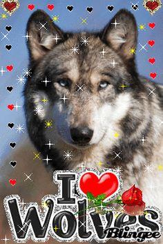 I LOVE WOLVES 3