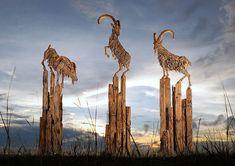 Amazing-driftwood-Wyvern-Dragon-by-sculptor-James-Doran-Webb3__880