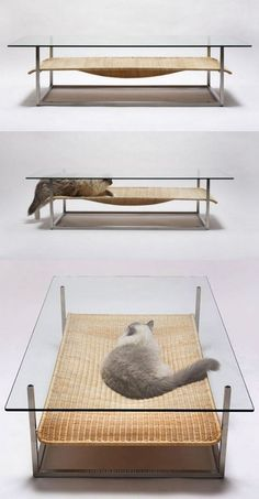 cat nap table (however, you know if you actually got this for your cat, they would instead lie on top of the table)