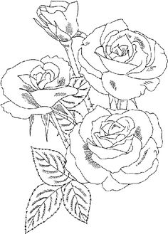 Printable Roses to Color | at Wednesday, August 24, 2011