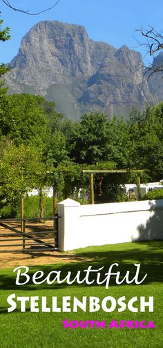 All you need to know about the region of Stellenbosch - the best wineries, how to get around (including a wine tour so you don't have to drive), as well as a whole bunch of other info on Stellenbosch (as well as Franschhoek). Places Around The World, Around The Worlds, Beautiful Places To Visit, Amazing Places, Cape Town South Africa, Slow Travel, Best Places To Travel, Africa Travel, Adventure Is Out There