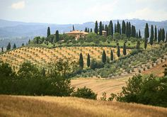 Located in the central region of Italy, Tuscany boasts stunning countryside, a beautiful coastline and culture aplenty in its capital city, Florence. And that's before you get to the food...