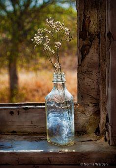 Bottle on Window Sill. Photo by Norma Warden Photography. Wabi Sabi, Bouquet Champetre, Vie Simple, Fresh Farmhouse, Deco Floral, Window View, Window Ledge, Window Frames, Through The Window