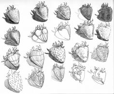 20 sketches of a strawberry that gradually becomes abstract.