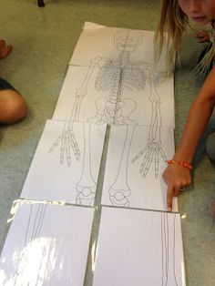 Jannis undervisningsforløb: Kroppen Blog, Blue Prints, Nature, Blogging