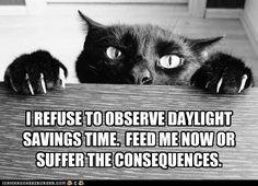 I think we should all attempt this with the government; perhaps they'd do away with daylight savings time.
