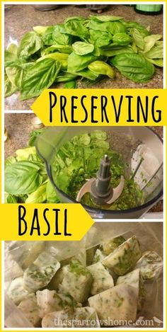 Freezing basil to add to recipes year round is so easy! It's my favorite way to preserve summer.