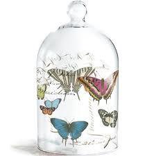 butterfly glass cloche from Fringe Studio