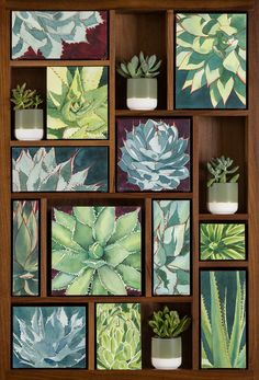 """""""Succulence collection"""" watercolor --   by Heidi Rosner"""