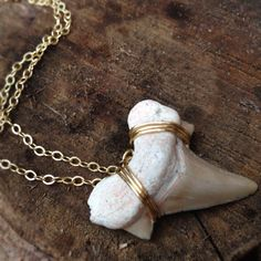 Shark Tooth and 14k Gold Necklace. via Etsy.