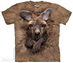 3682 Baby Kangaroo