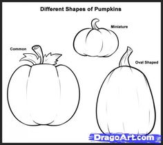 Step 1. How to Draw Pumpkins