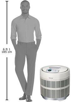 Honeywell Air Purifier, Air Purifier Reviews, Women Health, Consumer Products, Home Goods, Outdoors, Shower, Sports, Rain Shower Heads