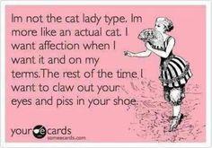 although I am a crazy cat lady too LOL