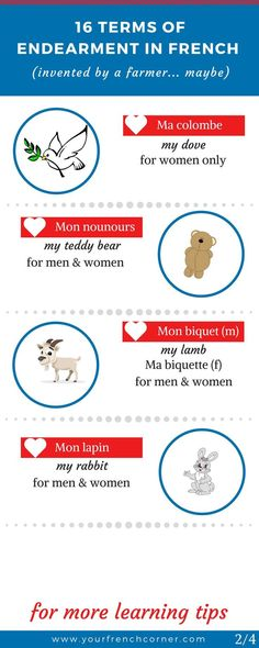 Did someone call you a flea in French? Here are 16 Unusual Endearment Terms In French. Find out why, I think, they were invented by a French farmer. Teach Yourself French, How To Speak French, Learn French Beginner, French For Beginners, French Language Lessons, French Lessons, French Teacher, Teaching French, French Articles