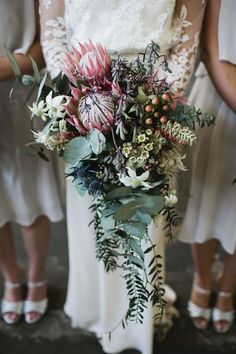 Wedding Trends Bouquet with native plants for a seasonal/regional/ethical wedding - The blank canvas of Laurens Hall fit the bill perfectly for Lucy Bouquet De Protea, Bouquet En Cascade, Boquet, Cascading Bouquets, Protea Wedding, Flower Bouquet Wedding, Floral Wedding, Unique Weddings, Wedding Bouquets