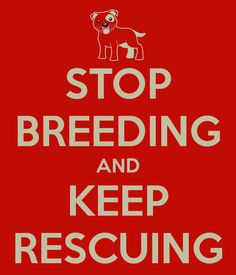 no petition - Stop breeding and keep rescuing