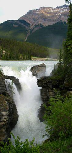 Athabasca Falls - Jasper National Park, Alberta, Canada Copyright: Julie Wyatt