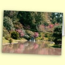 Diane Sloan's Zazzle Photographic Products