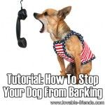 How To Stop Your Dog From Barking (2 tutorials)