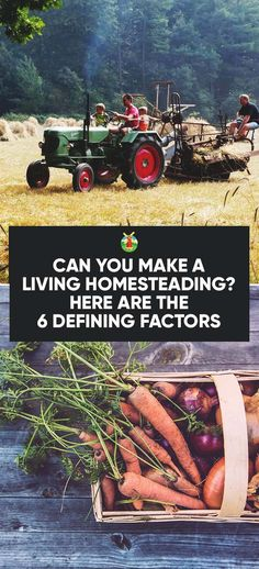 Can You Make a Living Homesteading? Here Are the 6 Defining Factors