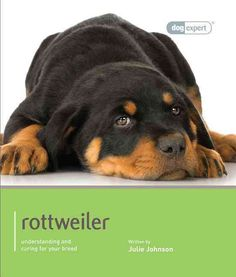 This dog expert guide gives you all the information you will need to provide your Rottweiler with the care and training that will enable him to lead a happy and fulfilling life. Written by experts, th