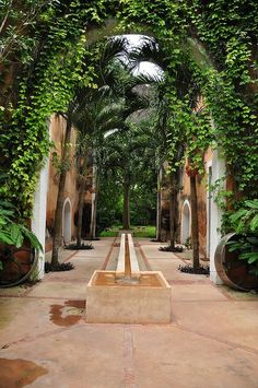 Irrigation Restoration at Hacienda Petac by Sanctuare: Private Hideaways, via Flickr