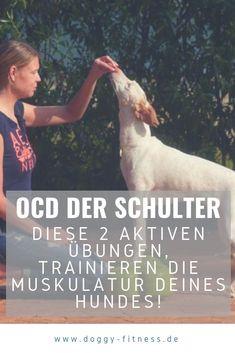 Wenn ein Hund unter einer OCD leidet, ist eine OP meist unumgänglich. In diesem Blogartikel stelle ich dir 2 aktive Bewegungsübungen vor, die deinen Hund bei der Reha unterstützen! OCD | Gelenkerkrankungen | Arthrose Hund | Hundegesundheit | Hundewissen | Hundephysio | Gelenkschmerzen | Bewegungstraining Ocd, Aktiv, Animals, Toller Dog, Pooch Workout, Natural Medicine, Feel Better, Animaux, Animal