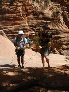 Tips for Hiking in Zion National Park - The Carefree Traveler Zion National Park, National Parks, Bradley Mountain, North America, Road Trip, Hiking, Tips, Summer, Travel