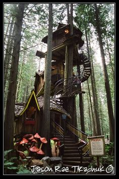 The Tree House in The Enchanted Forest: near Three Valley Gap, British Columbia