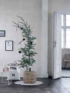 Bloomingville-Weihnachten-Blog-Jennadores-Weihnachtsdeko-2015-Trends-Tannenbaum-im-Korb-geschmückt