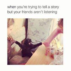 #memes #meme #stolenmemes #memesdaily #ilovememes #memestagram #funnymemes #funnypic #dailymemes #twitter #twittermemes #tumblr #tumblrmemes #instameme #instagramer #instagood #relatable #relatablememes #banter