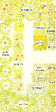 Vegetable Garden Planner, Vegetable Gardening Tips and Companion Gardening #gardenplanningideascompanionplanting