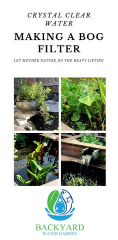 Learn how to build a bog filter that uses the natural cycle of the pond ecosystem. Naturally maintain balance keeping the water crystal clear. Outdoor Ponds, Ponds Backyard, Garden Ponds, Backyard Waterfalls, Outdoor Fountains, Water Fountains, Garden Fountains, Outdoor Ideas, Pond Design