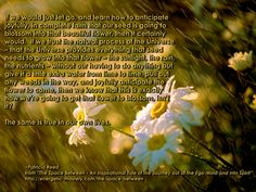 http://energetic-mastery.com/#/quotes  If we would just let go, and learn how to anticipate joyfully, in complete faith that our seed is going to blossom into that beautiful flower, then it certainly would. If we trust the natural process of the Universe – that the Universe provides everything that seed needs to grow into that flower – the sunlight, the rain, the nutrients – without our having to do anything but give it a little extra water from time to time, pull out any weeds in the way...