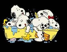 Image result for snoopy family