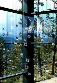 I want to go to this place :-) Swarovski crystal-infused Sparkling Hill Bird Feeders, Swarovski Crystals, To Go, Bucket, Hotels, Sparkle, Memories, Spaces