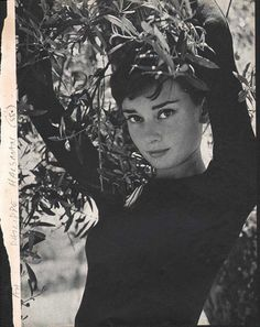 Audrey Hepburn (born Audrey Kathleen Ruston; 4 May 1929 - 20 January 1993) was a British actress and humanitarian. Recognised as both a film and fashion icon, Hepburn was active during Hollywood's Gol