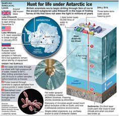 ANTARCTICA: Hunt for life under Antarctic Ice.