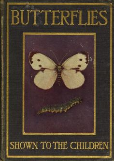 Butterflies and moths, shown to the covering book book cover Best Book Covers, Vintage Book Covers, Beautiful Book Covers, Book Cover Art, Vintage Children's Books, Book Cover Design, Antique Books, Book Design, Book Art