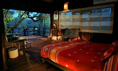 Branch out, the best tree house hotels across the world