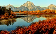Last Stand of Fall by Jeff Clow, via 500px
