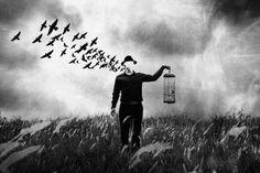 Freedom by jay satriani