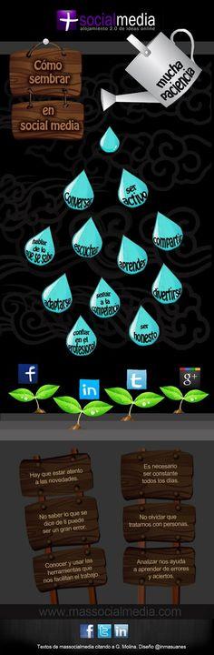 Principios básicos del social media