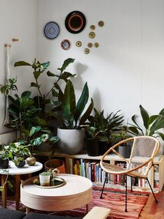 Beautiful green corner inspiration for your home - Daily Dream Decor