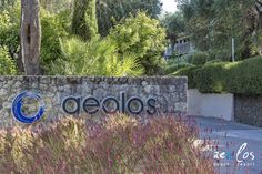 Welcome to Aeolos Corfu Beach Resort. One of the most beautiful Beach Resorts in Corfu, surrounded by gardens and the infinite blue of the Ionian Sea. Corfu Beaches, Beach Hotels, Beach Resorts, Most Beautiful Beaches, East Coast, Holiday, Plants, Vacations