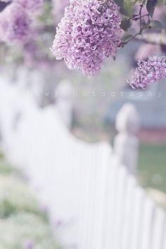 .♥ Spring Time ♥
