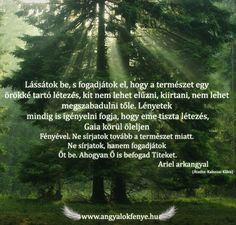Ariel arkangyal: A természet örökké tartó létezése Ariel, Emo, Country Roads, Emo Style