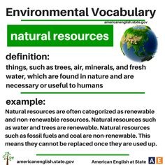 Environmental Vocabu