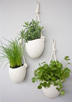 beautiful wall planters by Light and Ladder.